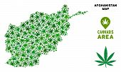 Постер, плакат: Ganja Afghanistan Map Mosaic Of Marijuana Leaves Narcotic Distribution Template Vector Afghanistan