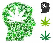 Cannabis Man Head Mosaic Of Cannabis Leaves In Various Sizes And Green Tones. Vector Flat Cannabis L poster