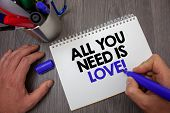 Text Sign Showing All You Need Is Love Motivational. Conceptual Photo Deep Affection Needs Appreciat poster