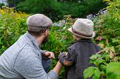 Closeup Of Father And Child Wearing Cap And Sun Hat While Holding Hands Against Fresh Green Plants I poster
