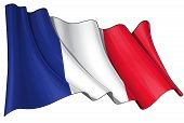 image of french curves  - Waving French flag - JPG