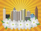 stock photo of dogwood  - Atlanta Georgia City Skyline with Sun Rays and Dogwood Tree Flowers in Background Illustration - JPG