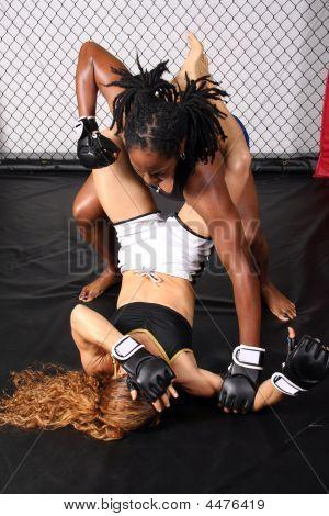 Постер, плакат: Женщины в смешанных боевых искусств, холст на подрамнике