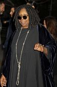 NEW YORK, NY - APRIL 16: Whoopi Goldberg attends Vanity Fair Party for the 2013 Tribeca Film Festiva