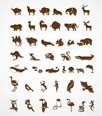 stock photo of kangaroo  - vector collection of animal icons - JPG