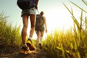 stock photo of friendship  - Hikers with backpacks walking through a meadow with lush grass - JPG
