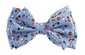 stock photo of bow tie hair  - Dotted bow tie blue with multicolor spots - JPG