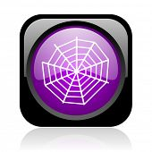 spider web black and violet square web glossy icon