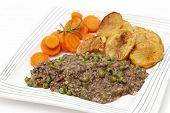 image of sauteed  - Minced beef cooked with onion - JPG
