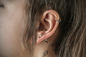 foto of piercings  - piercings - JPG