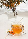 stock photo of sea-buckthorn  - sea buckthorn tea cup and vase with branch of sea - JPG