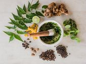 foto of pestle  - A selection of natural ingredients arranged in and around a marble mortar and pestle - JPG