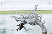 picture of dragon-fish  - Dragon fish are animals in Thai novel in public park - JPG