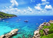 image of tropical island  - Tropical white sand with palm trees at  Similan islands Thailand Phuket - JPG