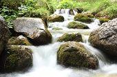 pic of garden eden  - mountain stream - JPG