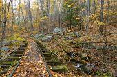 foto of blue ridge mountains  - Old logging tracks in the Blue Ridge mountains of Virginia. Located on the Blue Ridge Parkway - JPG