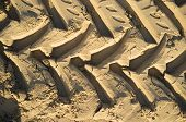 stock photo of four-wheel drive  - Huge tyre tracks imprinted in beach sand - JPG