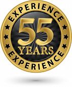 image of experiments  - 55 years experience gold label vector illustration - JPG