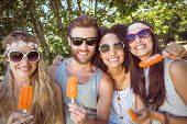 picture of lolli  - Hipster friends enjoying ice lollies on a summers day - JPG