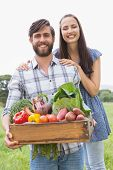 Happy couple with box of veg on a sunny day poster