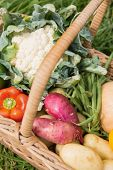 Basket of fresh organic veg on a sunny day poster