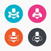 stock photo of flying-insect  - Circle buttons - JPG