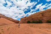 picture of buckskin  - Hiker in Dry Fork Narrows of Coyote Gulch - JPG
