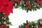 stock photo of snow border  - Thanksgiving and christmas border with red poinsettia flower - JPG