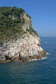 stock photo of saracen  - The Mediterranean sea in Italy - JPG