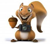 foto of megapixel  - Fun squirrel - JPG