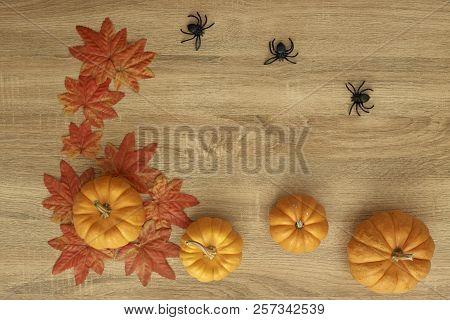Poster: Pumpkin Autumn Thanksgiving Background