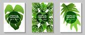 Tropical Paradise Leaves Vector Covers Set. Fashionable Floral A4 Design. Exotic Tropic Plant Leaf V poster