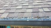 Gutters On Shingle Roof Without Gutter Guards Clogged With Leaves From Trees. Increased Risk Of Clog poster