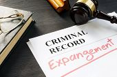 Expunge Of Criminal Record. Expungement Written On A Document. poster