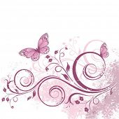 foto of butterfly  - Vector card with a branch and butterflies - JPG