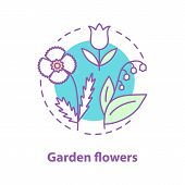 Garden Flowers Concept Icon. Botany Idea Thin Line Illustration. Poppy, May Lily, Tulip. Vector Isol poster