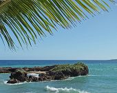 stock photo of greater antilles  - coastal scenery at the Dominican Republic a island of Hispanola wich is a part of the Greater Antilles archipelago in the Carribean region - JPG