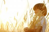 picture of fall-wheat  - Kid at wheat field hugging harvest grain - JPG