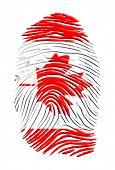 Постер, плакат: Канадской самобытности палец печати