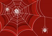stock photo of spider web  - Background with web and spider element for design vector illustration - JPG