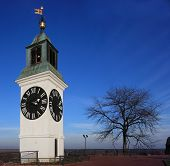 Clock Tower In Vojvodina Serbia poster
