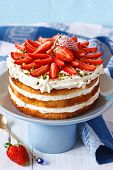 pic of cake stand  - Sweet homemade cake with strawberry and whipped cream on a cake stand - JPG