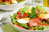 foto of red shallot  - Salad Nicoise with tomatoes green beans tuna eggs and anchovies dressed with vinaigrette - JPG