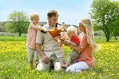 pic of tickle  - a happy family of four people mother father young child and toddler are playing with stuffed fox toys outside in a Dandelion flower meadow on a Spring day - JPG