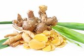 image of zingiber  - Cassumunar ginger: Zingiber cassumunar is a species of plant in the ginger family.  It is called plai in Thailand, used medicinally in massage and even in food.