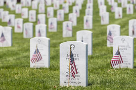 image of veterans  - veterans cemetery memorial celebration with American Flag - JPG