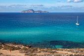 Постер, плакат: Turquoise sea of Favignana Sicily