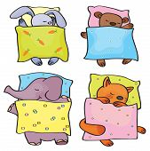 stock photo of baby animal  - Cute  baby animals cartoons sleeping in beds - JPG