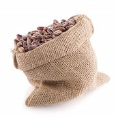 picture of pinto bean  - Closeup of pinto beans bag on white background - JPG