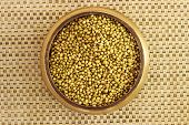picture of cilantro  - cilantro seeds kept in a bowl on a plain background - JPG